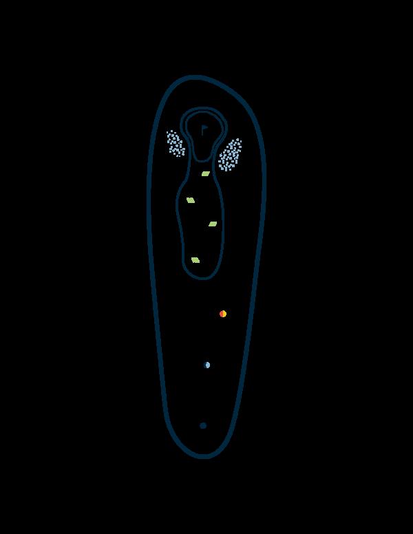 trou 1